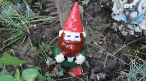 A home is not a home without a gnome