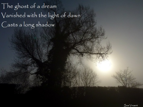 The ghost of a dream, vanished with the light of dawn, casts a long shadow