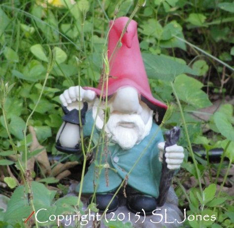 Gnome, The Fairy Garden, The Linden Chronicles