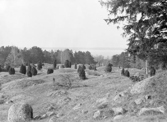 Stockholm, Ekerö, Adelsö, Uppland, Fornminnen-Gravar-Gravfält