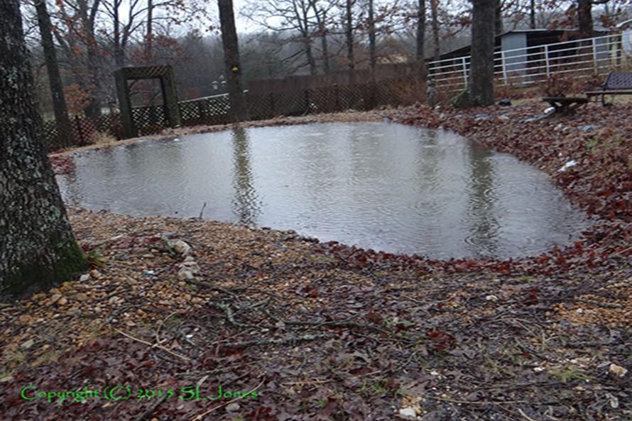 Patrick Jones Pond Overflows